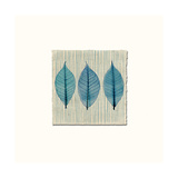 Handmade Paper and Leaves Prints by Evangeline Taylor