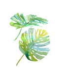 Watercolor Tropical 1 Prints by Mary Escobedo