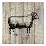 Farm Life 2 Posters by Kimberly Allen