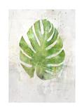 Textured Split Leaf Palm Print by Ken Roko