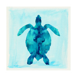 Tropical Sea Turtle Poster by Evangeline Taylor