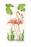 Flamingo Stroll 1 Prints by Mary Escobedo