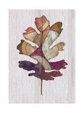 Wood Inlay Leaf 1 Poster by Filippo Ioco