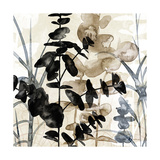 Natural Botanical 1 Prints by Melissa Pluch