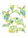 Watercolour Tropical Pattern 2 Print by Mary Escobedo