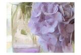 Hydrangea Jar Posters by Kimberly Allen
