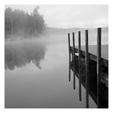 Stillness Print by Lisa Colberg