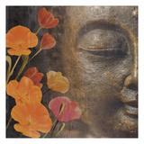 Floral Zen 1 Prints by Marcus Prime