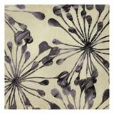 Floral Burst I Prints by Taylor Greene