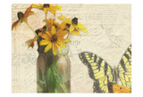 Carte Postale Sunflowers Posters by Kimberly Allen