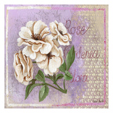 Gardenia Prints by May May