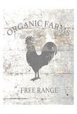 Organic Farm Prints by Victoria Brown