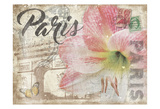 Mail To Paris Art par Jace Grey
