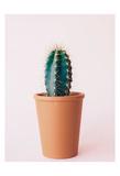 Lonely Cactus Art by Cynthia Alvarez