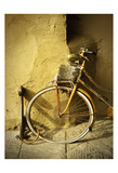 Lucca Bicycle Prints by James Rowland