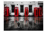 London Phone Booths Bird Prints by Vladimir Kostka