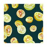 Citrus, 2016 Giclee Print by Varpu Kronholm