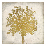 Tree Silhouette Gold 4 Prints by Kimberly Allen