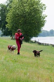Instructors Work with Dogs Trained for Rescue at Sea Near a Lake Near Milan, Italy Photographic Print by Lori Epstein