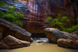 Dramatic Sandstone Formations in the Narrows Photographic Print by Ben Horton