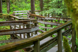 A Boardwalk Leads Through the Forest in Glacier Bay National Park Photographic Print by Erika Skogg