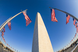 National Monument in Washington, District of Columbia, Surrounded by American Flags Photographic Print by Mike Theiss