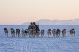 Inuit Hunters and Dog Sled Team on the Sea Ice Photographic Print by Cristina Mittermeier