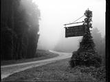 A Sign Covered in Kudzu on Highway 74 Near Bryson City, North Carolina Photographic Print by Stephen Alvarez