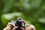 A Tourist Takes a Photograph of a Caterpillar Hanging from a Thread of Silk Photographic Print by Jonathan Kingston