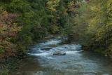 Stream Flowing During Autumn Photographic Print by Karen Kasmauski