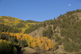 Autumn Foliage in Colorado Photographic Print by John Burcham
