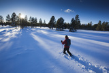 A Man Snowshoeing in Flagstaff, Arizona Photographic Print by John Burcham