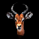 Low Poly Safari Art - The Look of Antelope - Black Edition Poster af Philippe Hugonnard