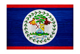 Belize Flag Design with Wood Patterning - Flags of the World Series Prints by Philippe Hugonnard