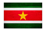Suriname Flag Design with Wood Patterning - Flags of the World Series Art by Philippe Hugonnard