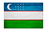 Uzbekistan Flag Design with Wood Patterning - Flags of the World Series Poster by Philippe Hugonnard
