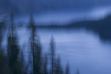 Abstract of Trees in Front of Crater Lake in Crater Lake National Park, Oregon Photographic Print by Philip Schermeister