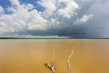 Thunderstorm Providing Fresh Rain Water to the Habitat of the North Caicos Islands Photographic Print by Mike Theiss