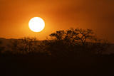 Sunset in South Africa's Sabi Sand Game Reserve Photographic Print by Steve Winter
