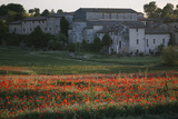 A Field of Poppies Next to a Villa in Monteriggioni Photographic Print by Matt Propert
