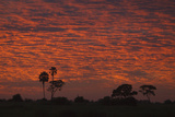 The Sun Setting Against the Clouds in the Botswana Sky Photographic Print by Beverly Joubert