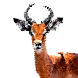 Low Poly Safari Art - The Antelope - White Edition Plakater af Philippe Hugonnard