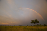 A Double Rainbow in a Cloudy Sky as the Sun Sets in Botswana Photographic Print by Beverly Joubert