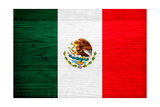 Mexico Flag Design with Wood Patterning - Flags of the World Series Prints by Philippe Hugonnard
