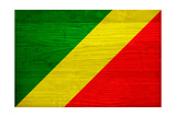 Republic of The Congo Flag Design with Wood Patterning - Flags of the World Series Posters by Philippe Hugonnard