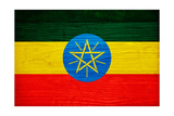 Ethiopia Flag Design with Wood Patterning - Flags of the World Series Plakater af Philippe Hugonnard