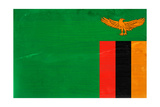 Zambia Flag Design with Wood Patterning - Flags of the World Series Art by Philippe Hugonnard
