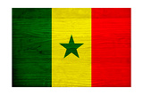 Senegal Flag Design with Wood Patterning - Flags of the World Series Prints by Philippe Hugonnard
