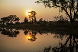 The Sun Setting over the Water Photographic Print by Beverly Joubert