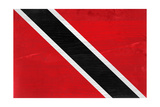 Trinitad And Tobago Flag Design with Wood Patterning - Flags of the World Series Poster by Philippe Hugonnard